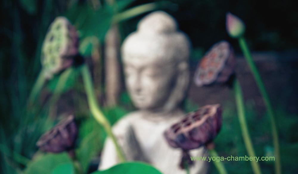 Yin yoga chambery
