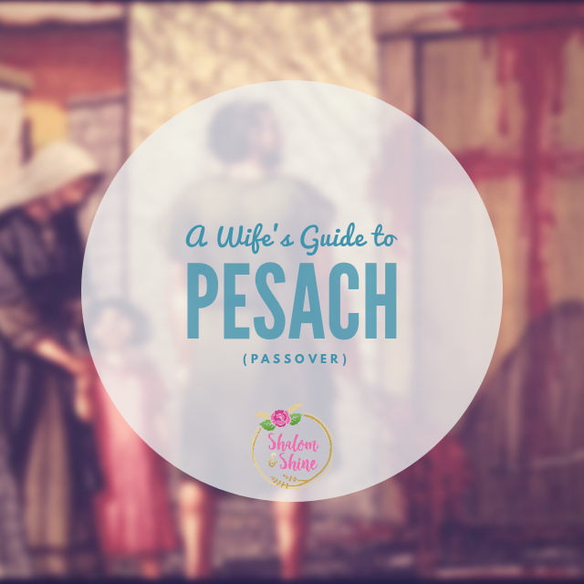 A Wife's Guide to Pesach (Passover)