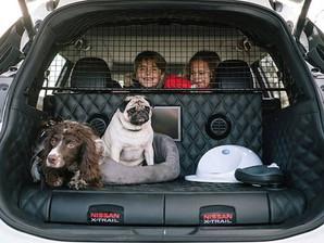 Nissan inova e cria carro pensado na mobilidade dos cachorros