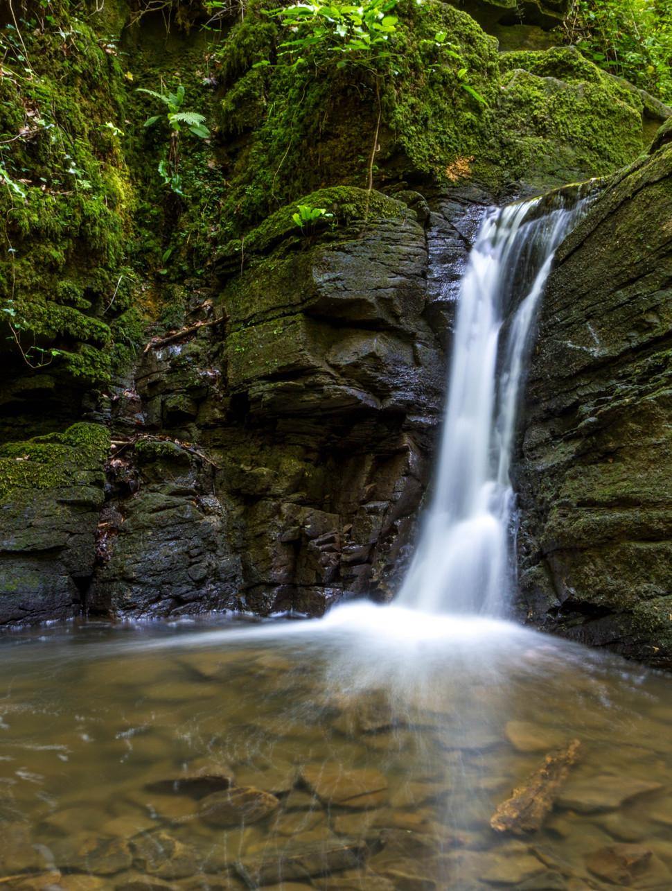 Paulton Waterfall