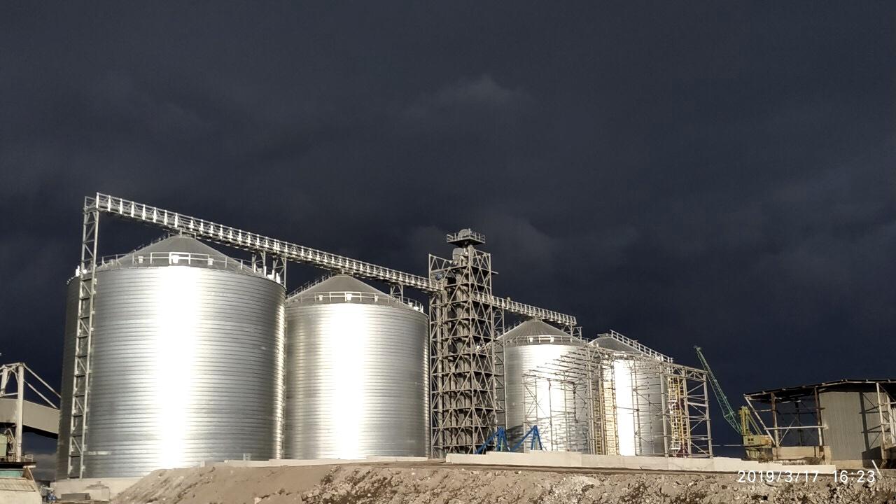 Речной зерновой терминал Каменское