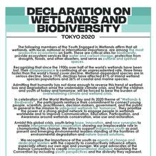 Declaration on Wetlands Biodiversity, Tokyo 2020