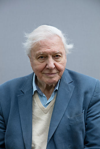 david-attenborough-voice-for-our-planet-well-1.jpg