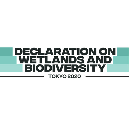 Youth Declaration on Wetlands and Biodiversity — TOKYO 2020