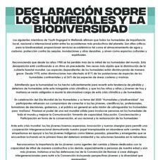 Declaración sobre los humedales y la biodiversidad, Tokio 2020