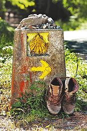 Backroad Camino.jpg