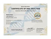 DNA Blue Egg Gene Certificate.jpg