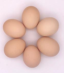 LO egg blossom
