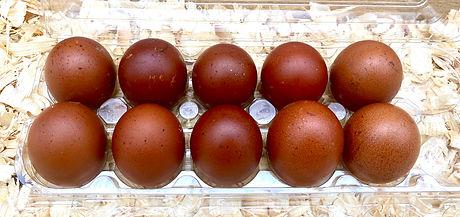 BCM eggs DC 4/2020