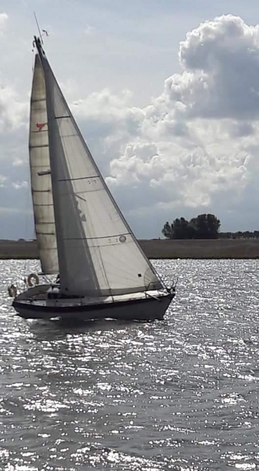 Etap 28 - sailing