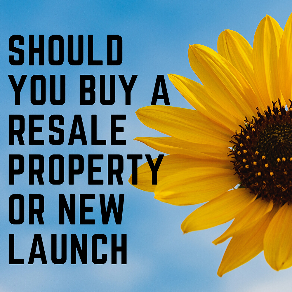 Should you buy a resale property or new launch?