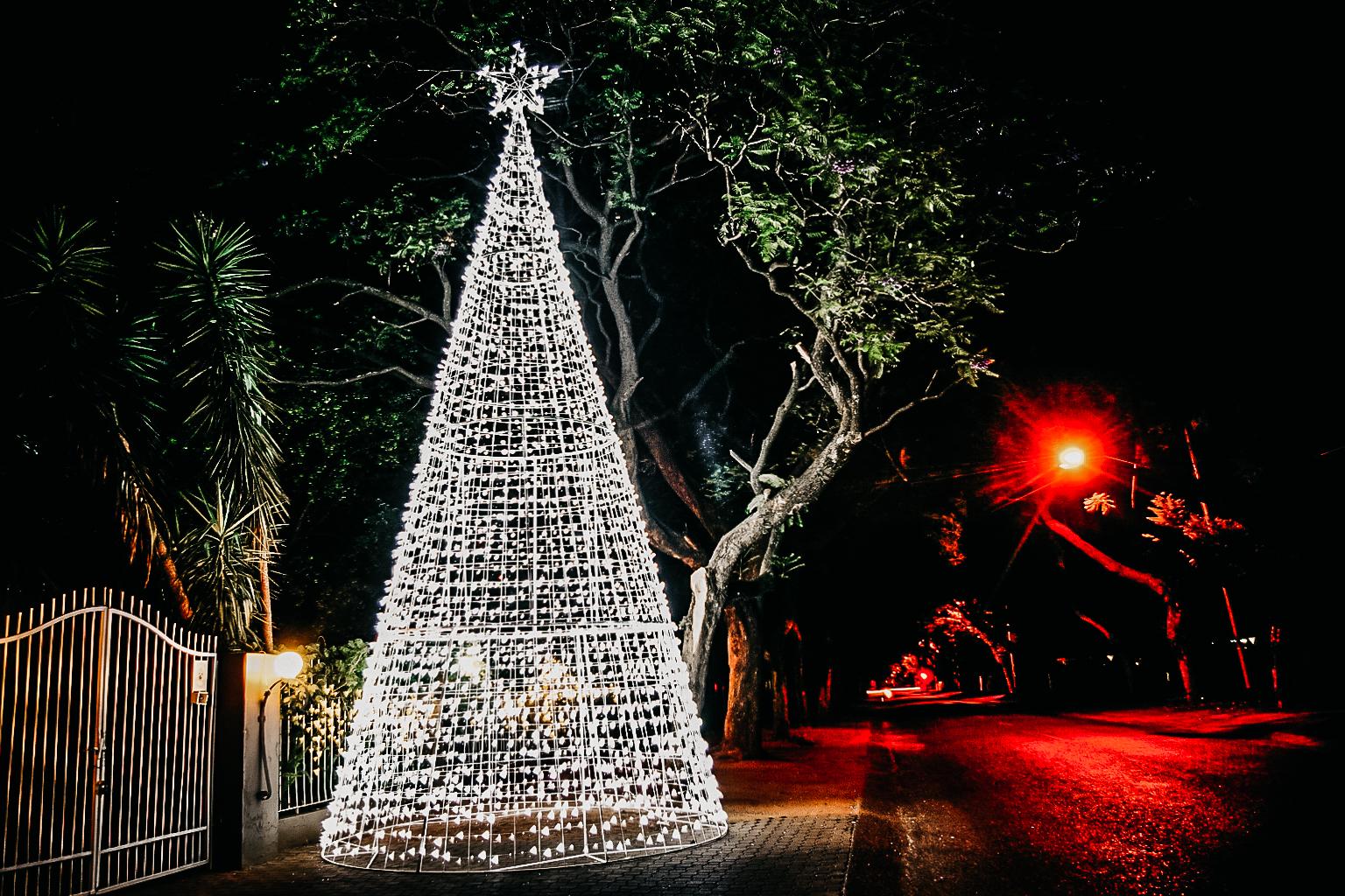Christmas (57)