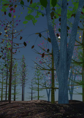 trees.mp4