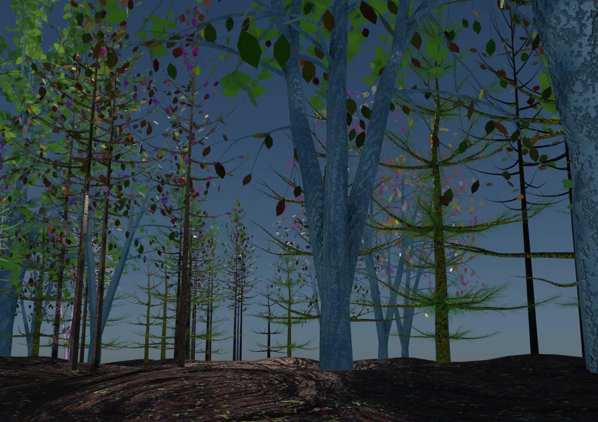 trees2.mp4