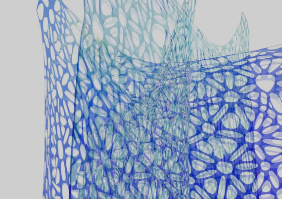 Blue Lace3.mp4