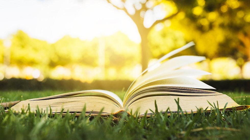 דפנה בר - כתיבה של סיפורי חיים - ספר פתוח