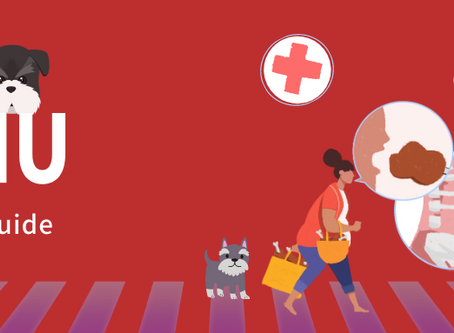 CMU 2020 Health Insurance Waiver Guide: How to save $1,300+/year?