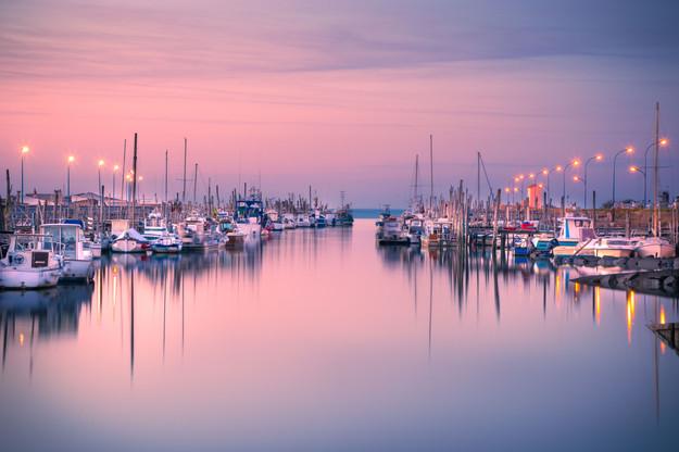 SWEET PURPLE DREAMS - Port du Bec, Bouin