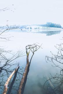 """""""Bluey"""" - Lac du Jaunay (La Baudrière)"""