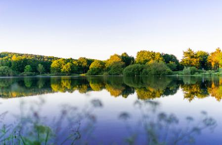 GOING PURPLE - Lac du Jaunay (La Baudrière)