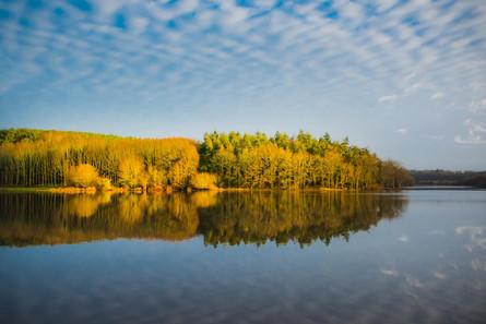 MORNING ENCHANTMENT - Lac du Jaunay (La Baudrière)