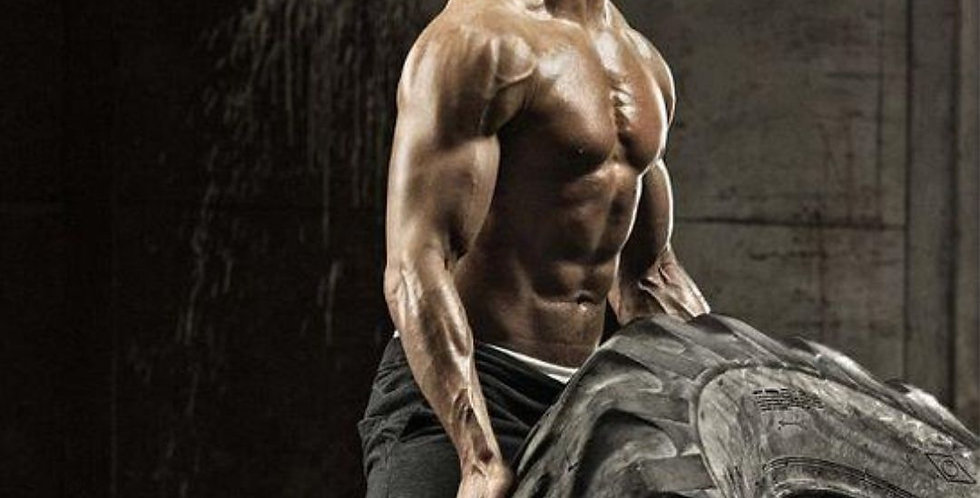 Make Your Workout 10x More Efficient