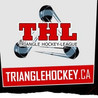 5 teams left in the Triangle Hockey League as 2 teams take a leave of absence and 1 joins the THL.