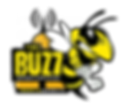 assiniboia_thebuzzrocks dot ca  logo2019
