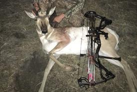 American Poachers receive Lifetime hunting ban & jail time