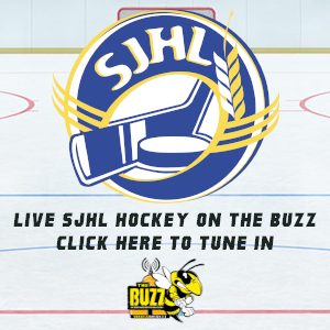 SJHL on the Buzz - 30X300 AD.png
