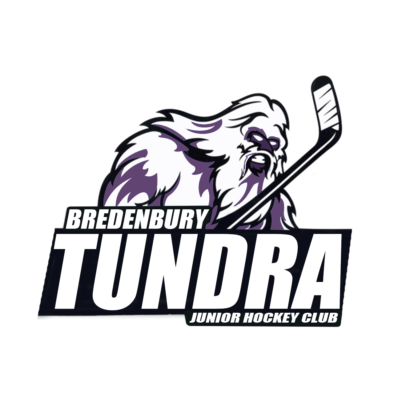 Bredenbury Tundra Jr Hockey Club