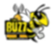 maplecreek_thebuzzrocks dot ca  logo2019