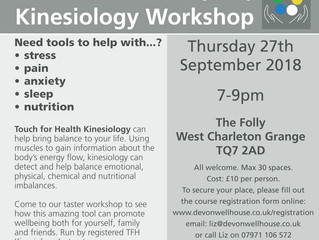 Come to our TFH Kinesiology Taster Workshop on 27th September 2018!