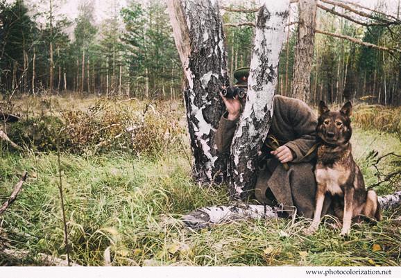 Soviet soldier with a dog on patrol / Советский пограничник с собакой в дозоре