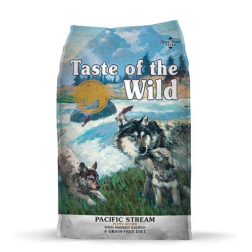 Taste of the Wild Salmon Cachorro