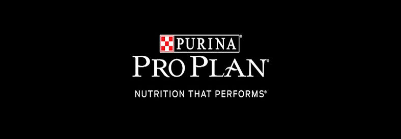 Banner Pro Plan_edited.jpg