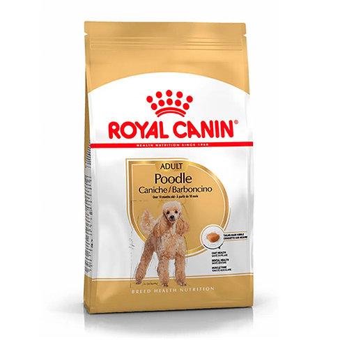 Royal Canin Poodle (1.5kg)