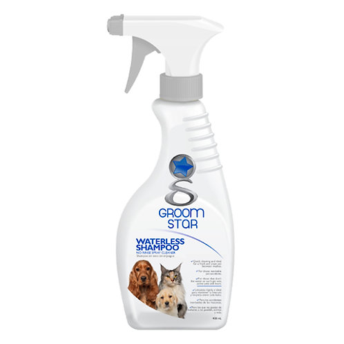 Shampoo en Seco Gromstar