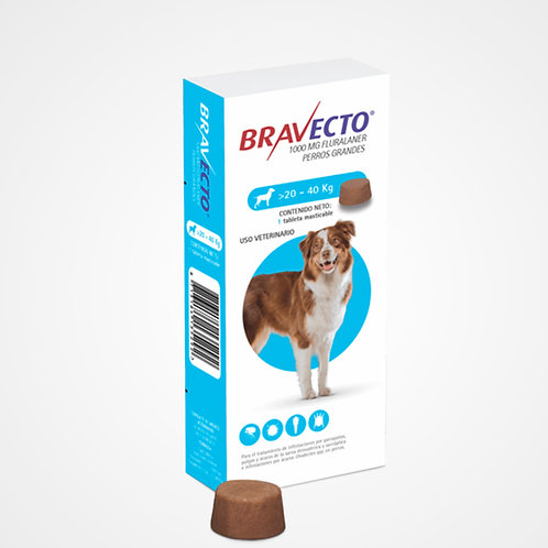 Bravecto 20 a 40kg (Pastilla anti-pulgas)