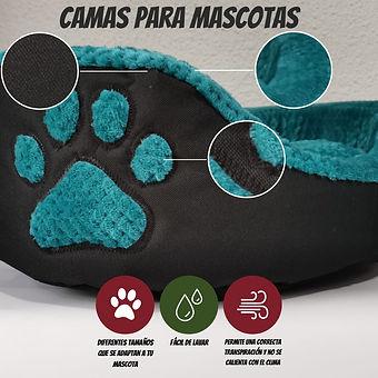 Banner Camas.jpeg