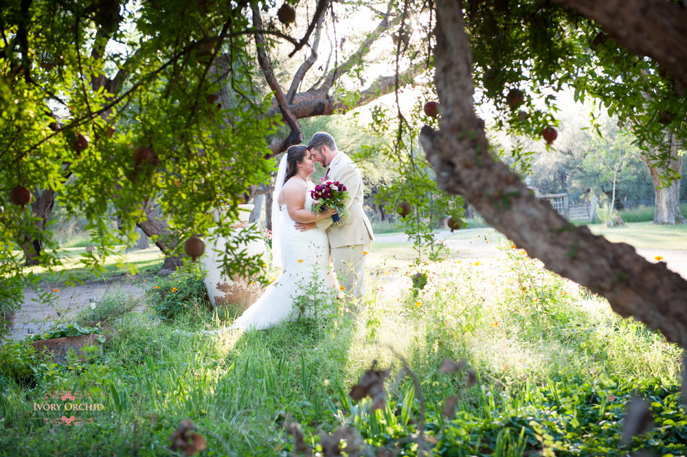 Couple embracing in garden with pomegranate tree in foreground.