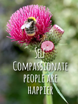 compassionate2.jpg