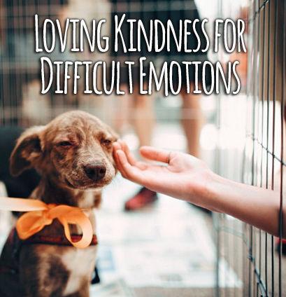 lovenadkindness2.jpg