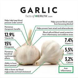 Garlic health chart