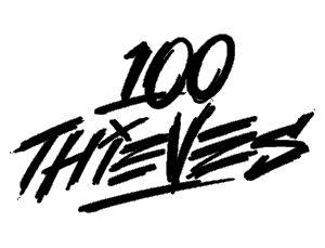 100_Thieves_2016.jpg