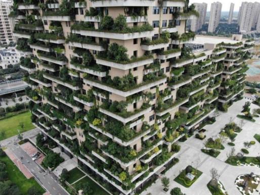 Por qué la arquitectura verde será fuente de millones de empleos