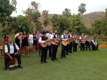 Musicians I Cabo Entertainment Company