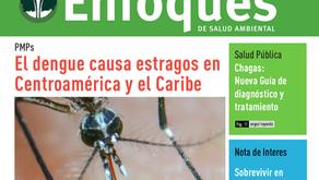 Enfoques de Salud Ambiental Nº 92