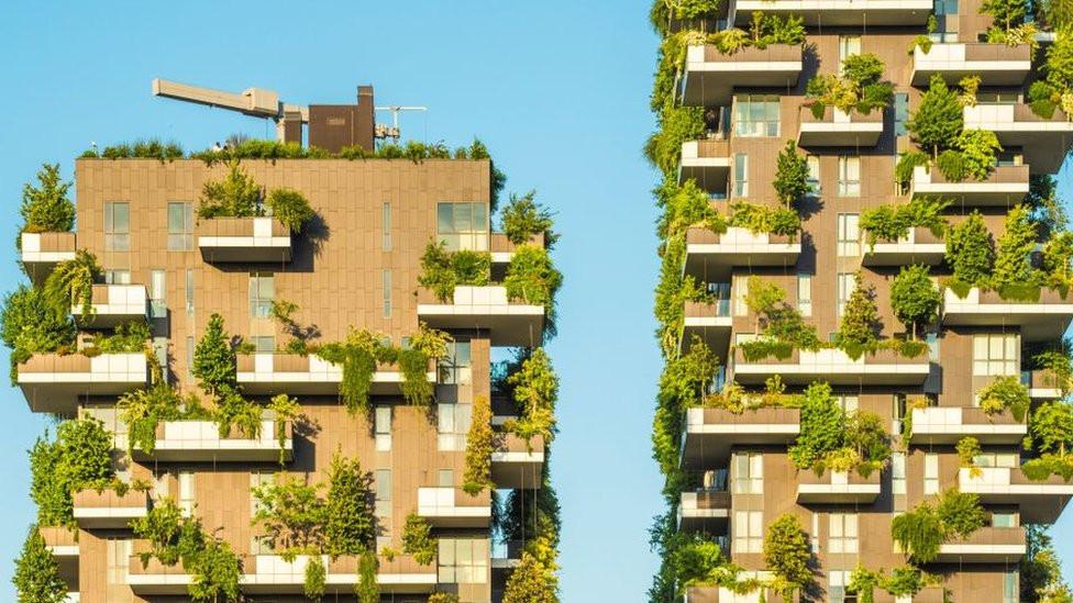 Paisajes verdes en edificios