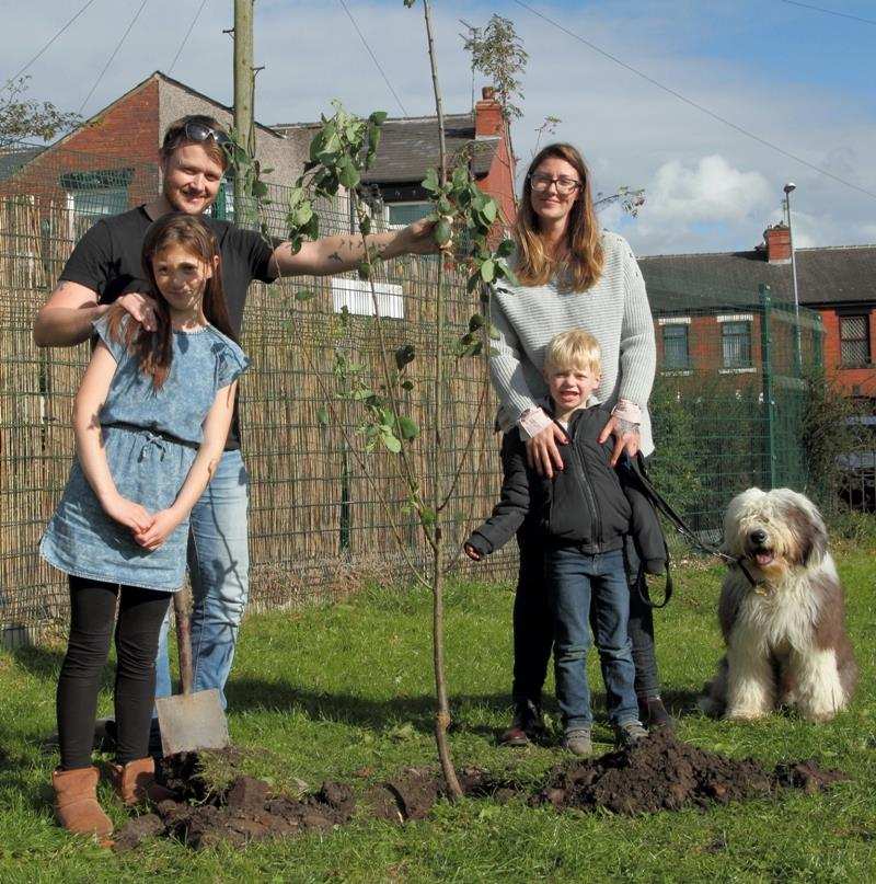 Mini Orchard tree planting
